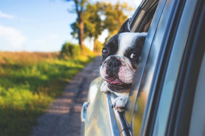 Advantages of Car Title Loans