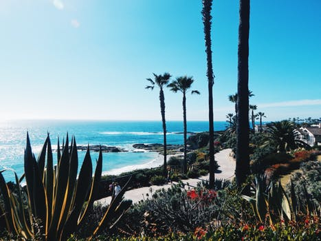 One Day Road Trips from Los Angeles