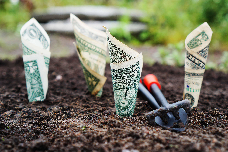 money in the ground